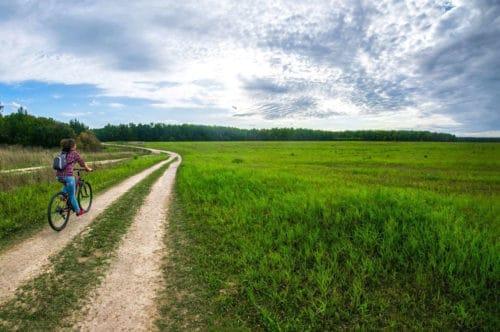 Bike tour nei Colli Euganei